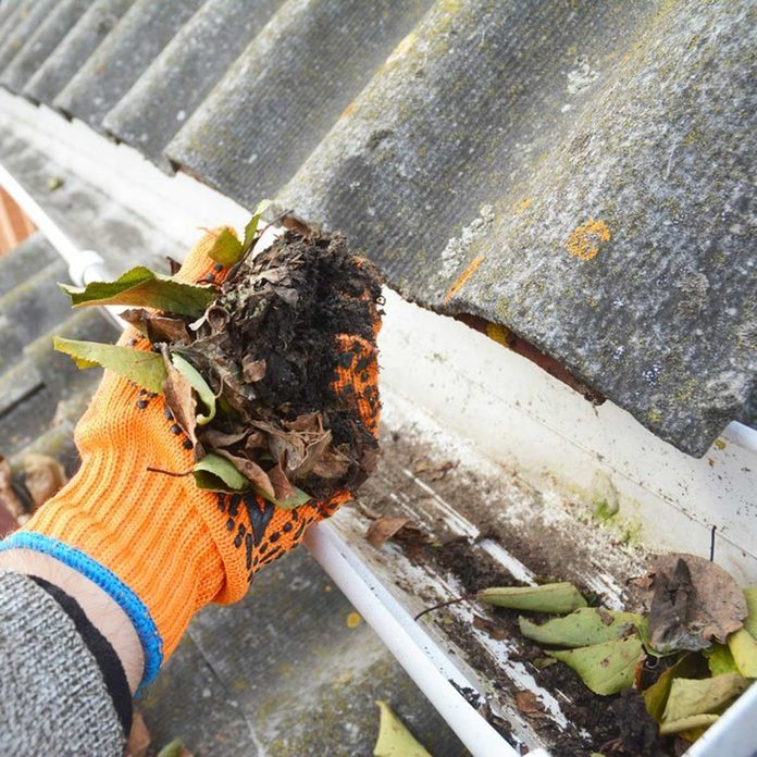clean the gutters leaves chores dirty