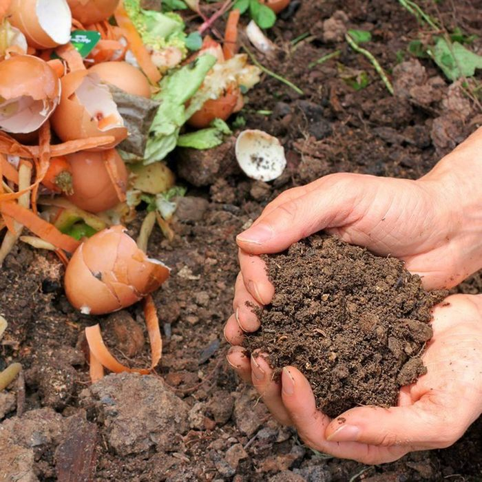 Know What You Can Compost