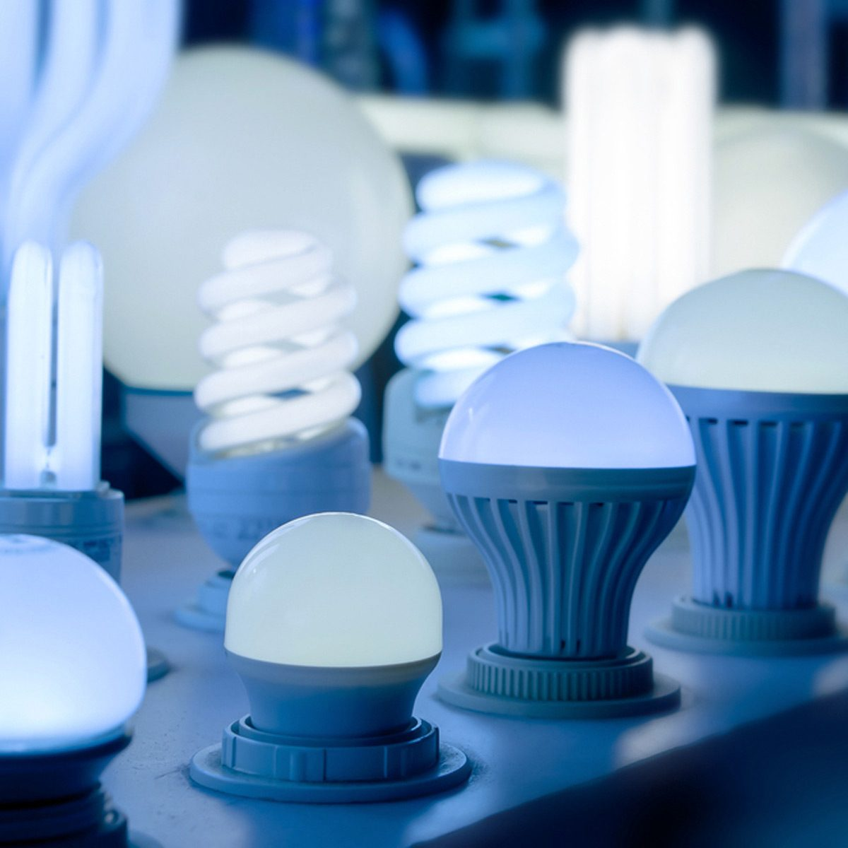LED Bulbs for Home: Learn Your Lumens
