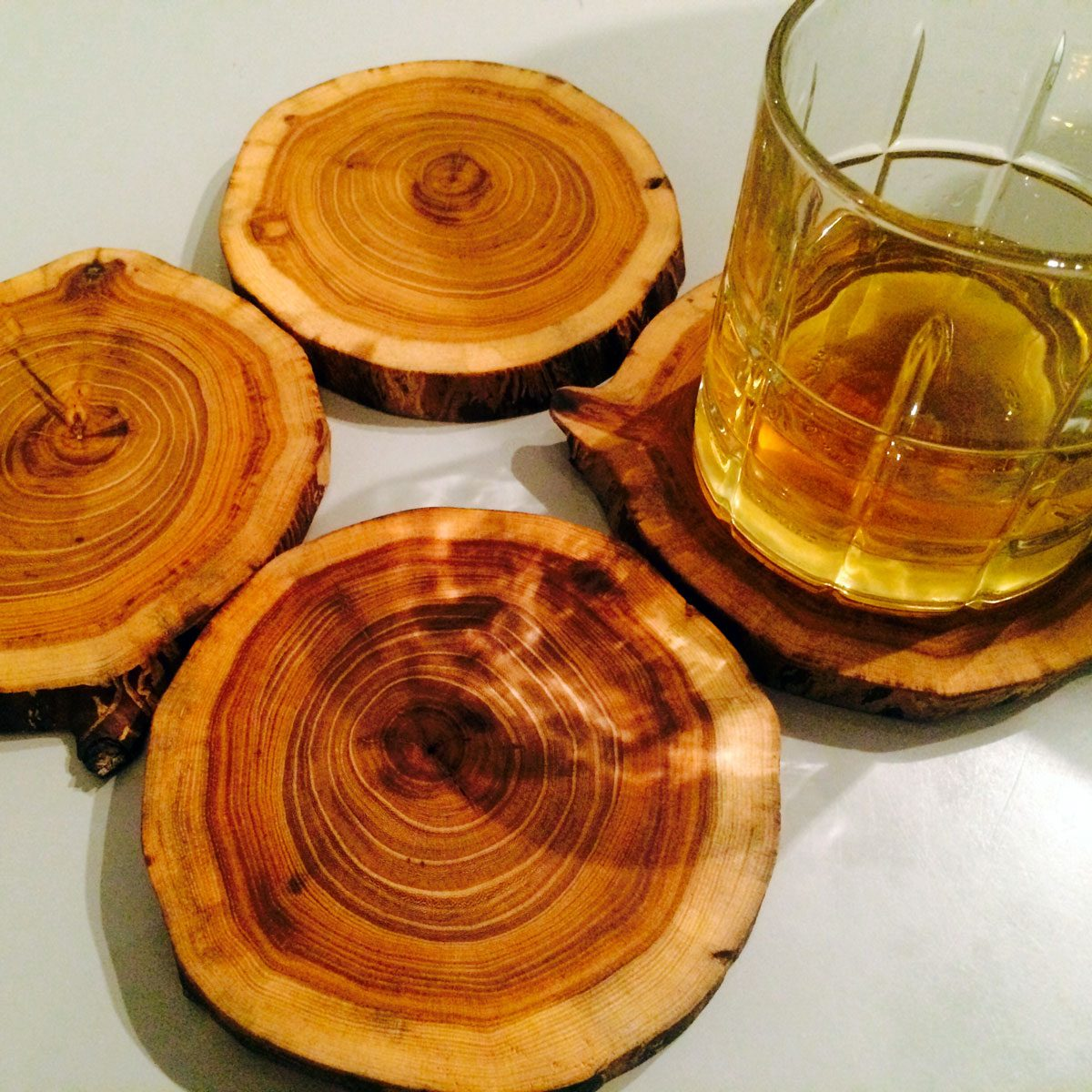 elm branch coasters