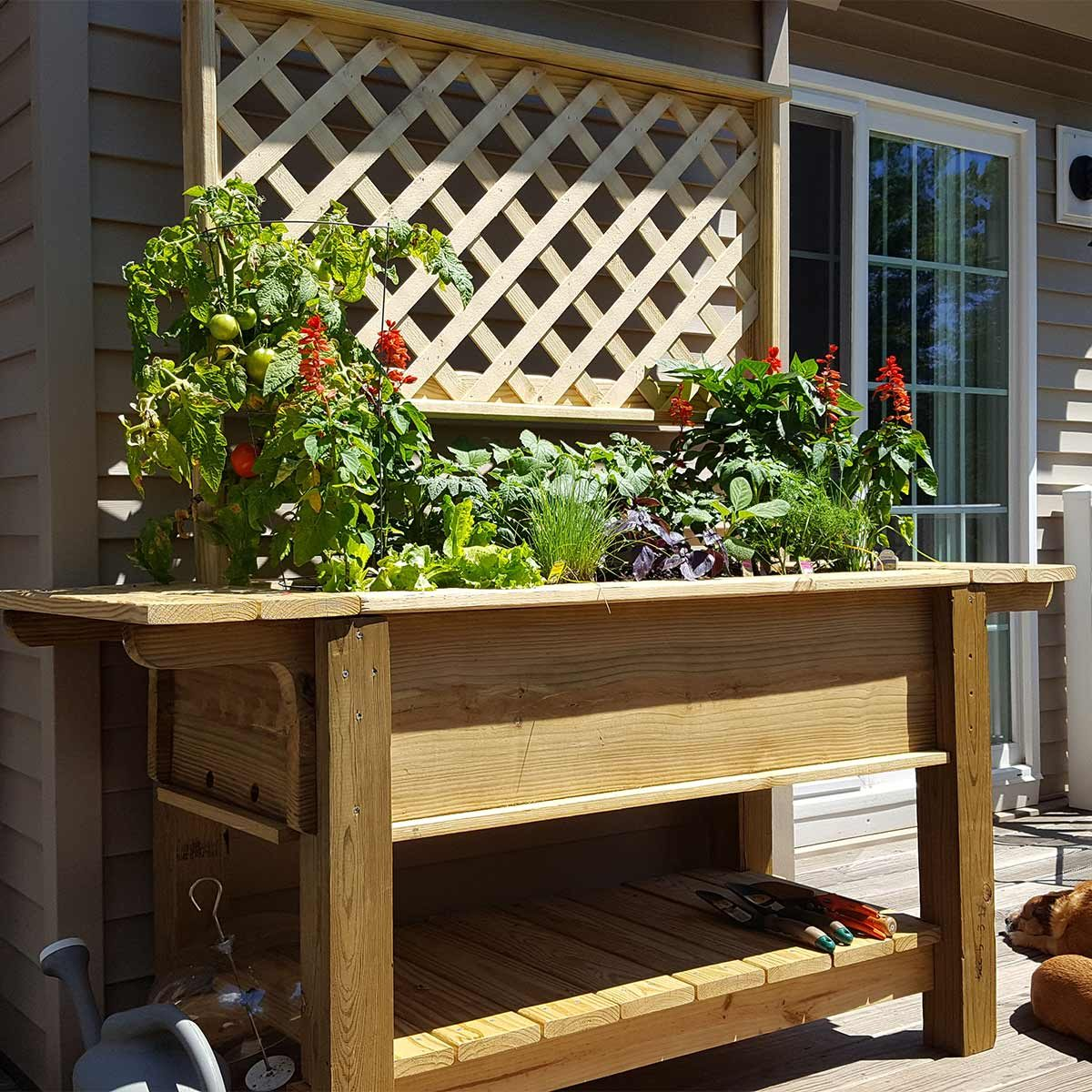 reader patio planter