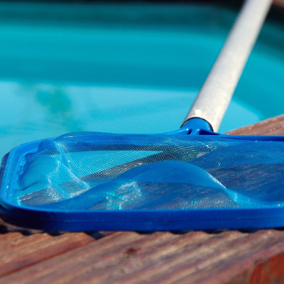 blue pool net cleaner laying beside a pool