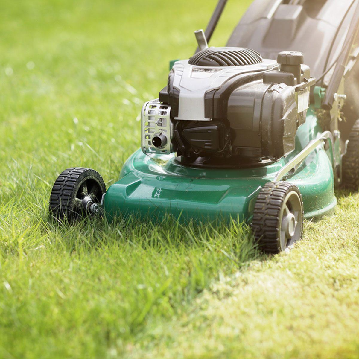Mowing lawn short