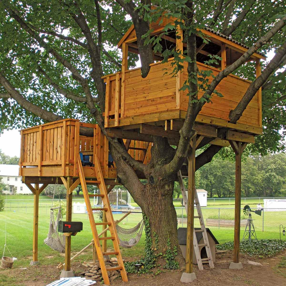 Tree house and deck