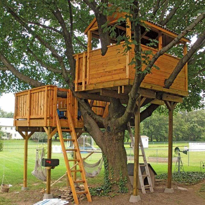 Envious Tree House
