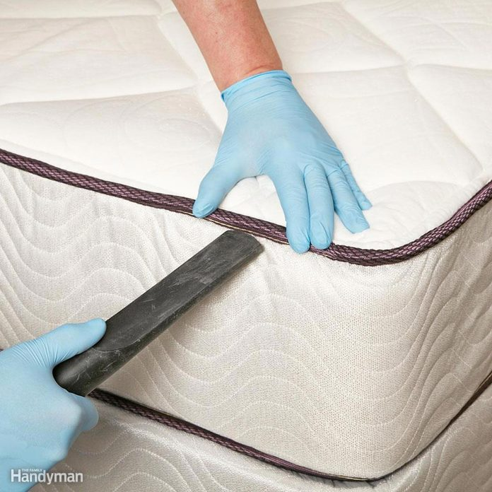 FH16JAU_BEDBUG_09-1 vacuum clean mattress disinfect bed