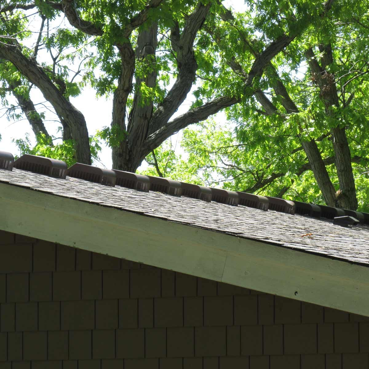 March of the roof vents