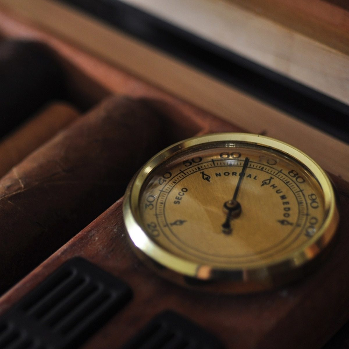 Treat Yourself with a Humidor