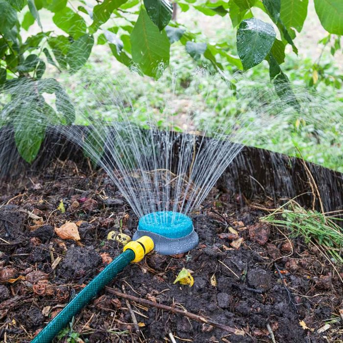 In Dry Areas, Add Water
