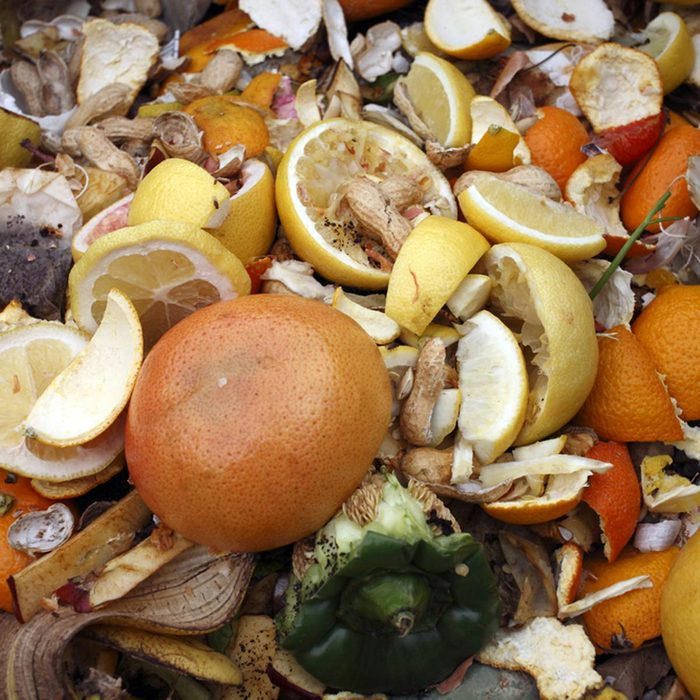 Avoid Large Compost Additions