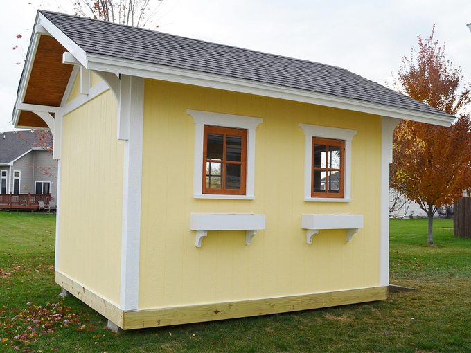 reader yellow shed back