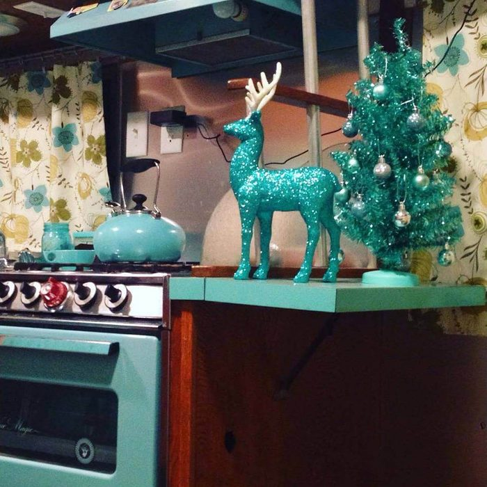 Color Coordinated Ornaments