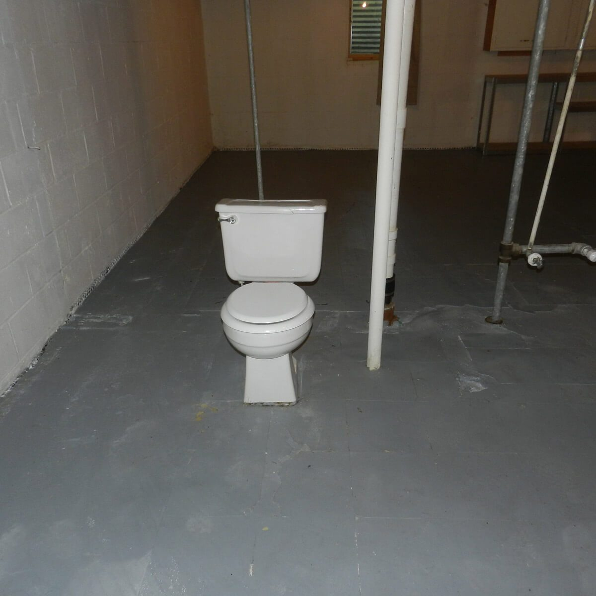 Porcelain throne for the uninhibited