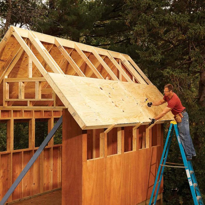 Plywood for Roofing