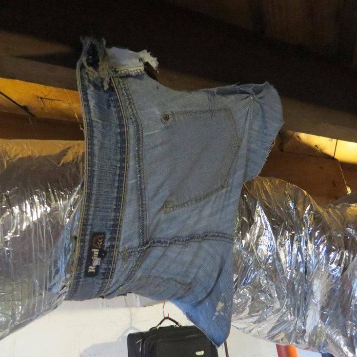 Tom-Sherman jean pants around duct work