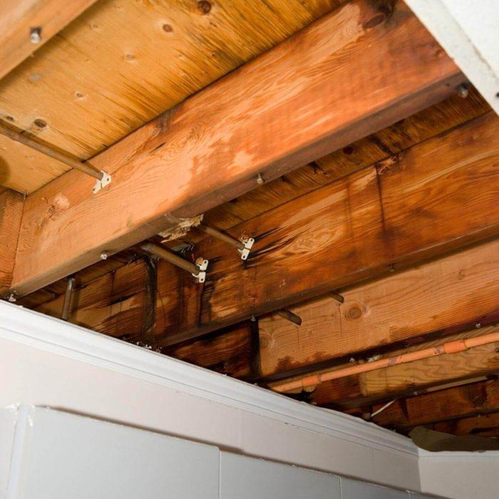 Replace Damaged Wood