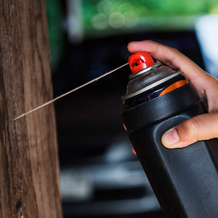 Use Repellent Termiticide on Safe Wood Structures