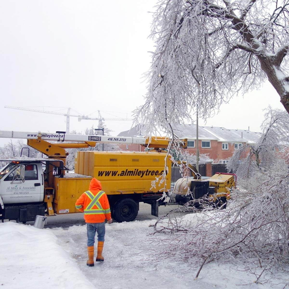 poweroutagekit_169901543 winter snow storm