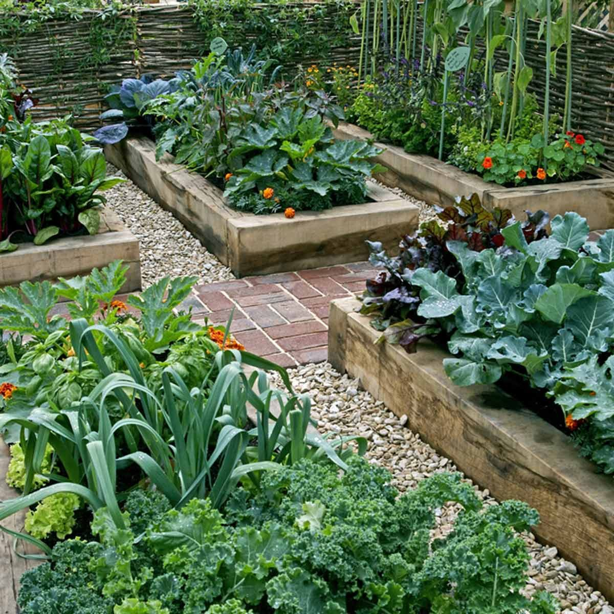 Grow More Vegetables