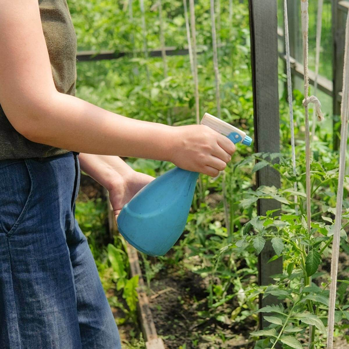 Manage Pests Naturally