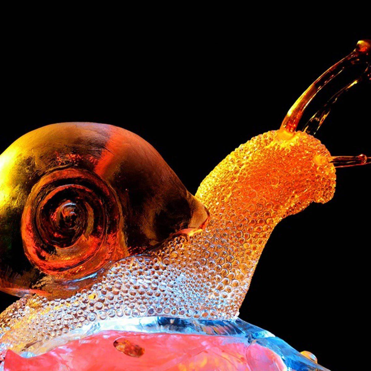 Ice Snail
