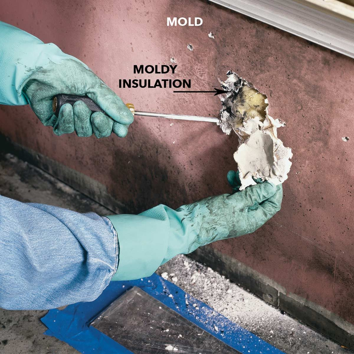 how to open up moldy walls