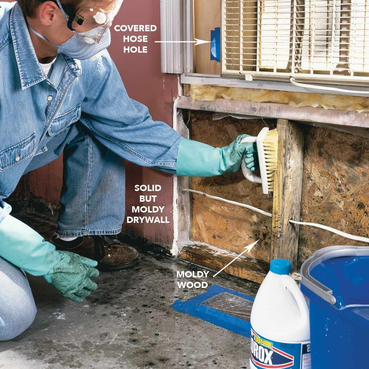 Scrub moldy surfaces with mold cleaner