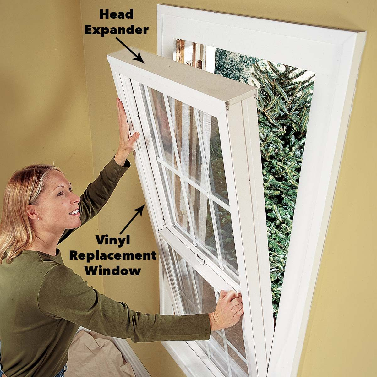place the window