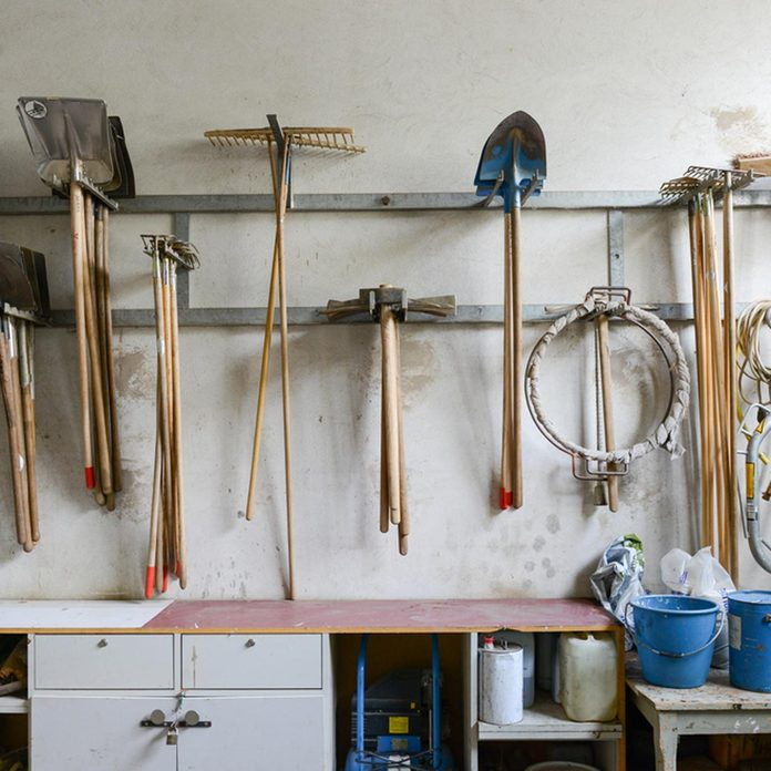 dfh2_shutterstock_414064312 organizing your shed