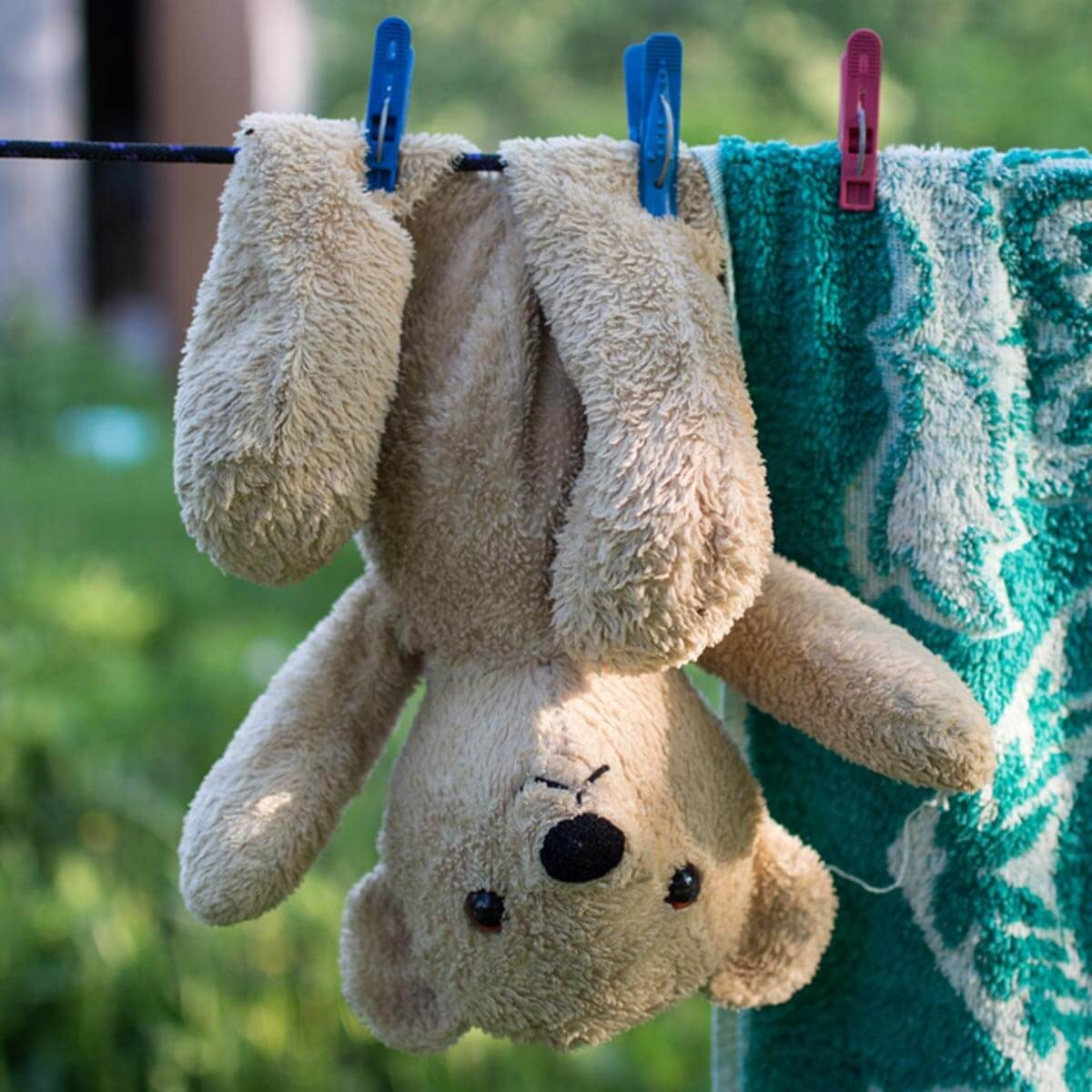 shutterstock_434304847 wash hang dry stuffed animal teddy bear