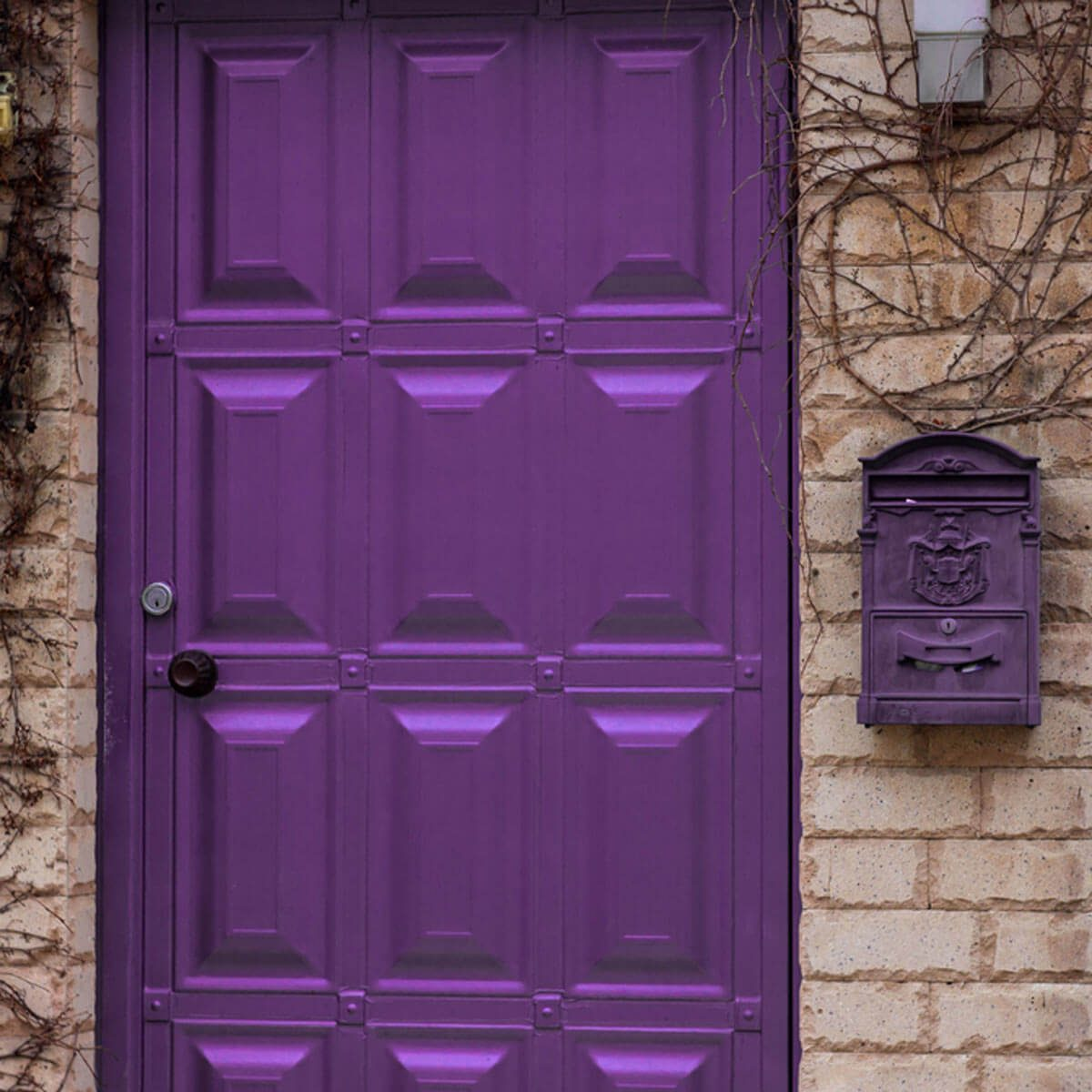 shutterstock_602113925 purple front door brick house