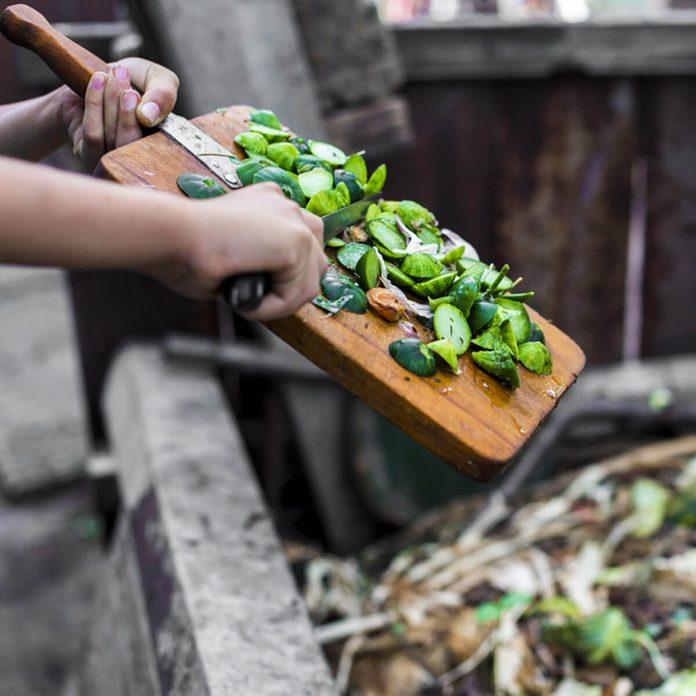 shutterstock_686242249 compost vegetables