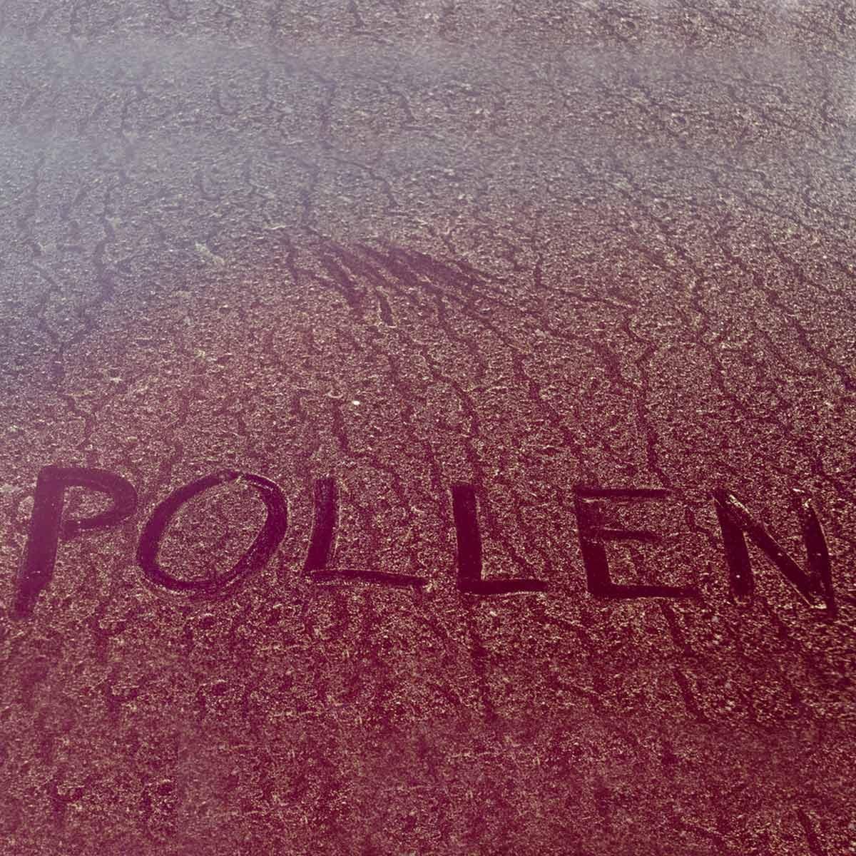shutterstock_98283779 pollen
