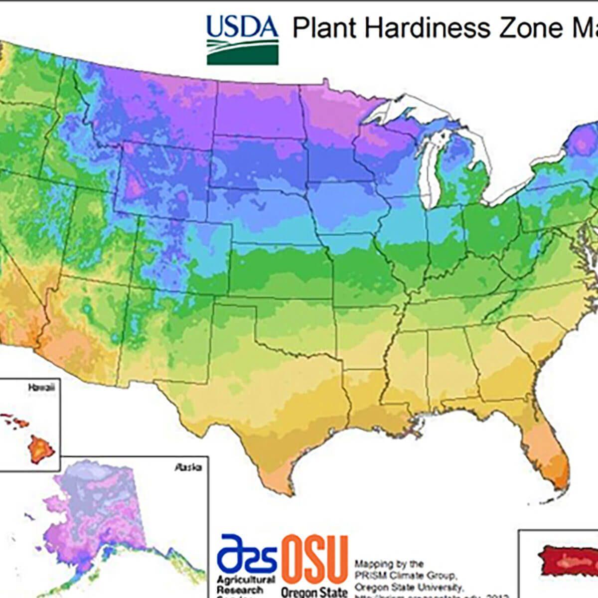 4-grow-zones plant