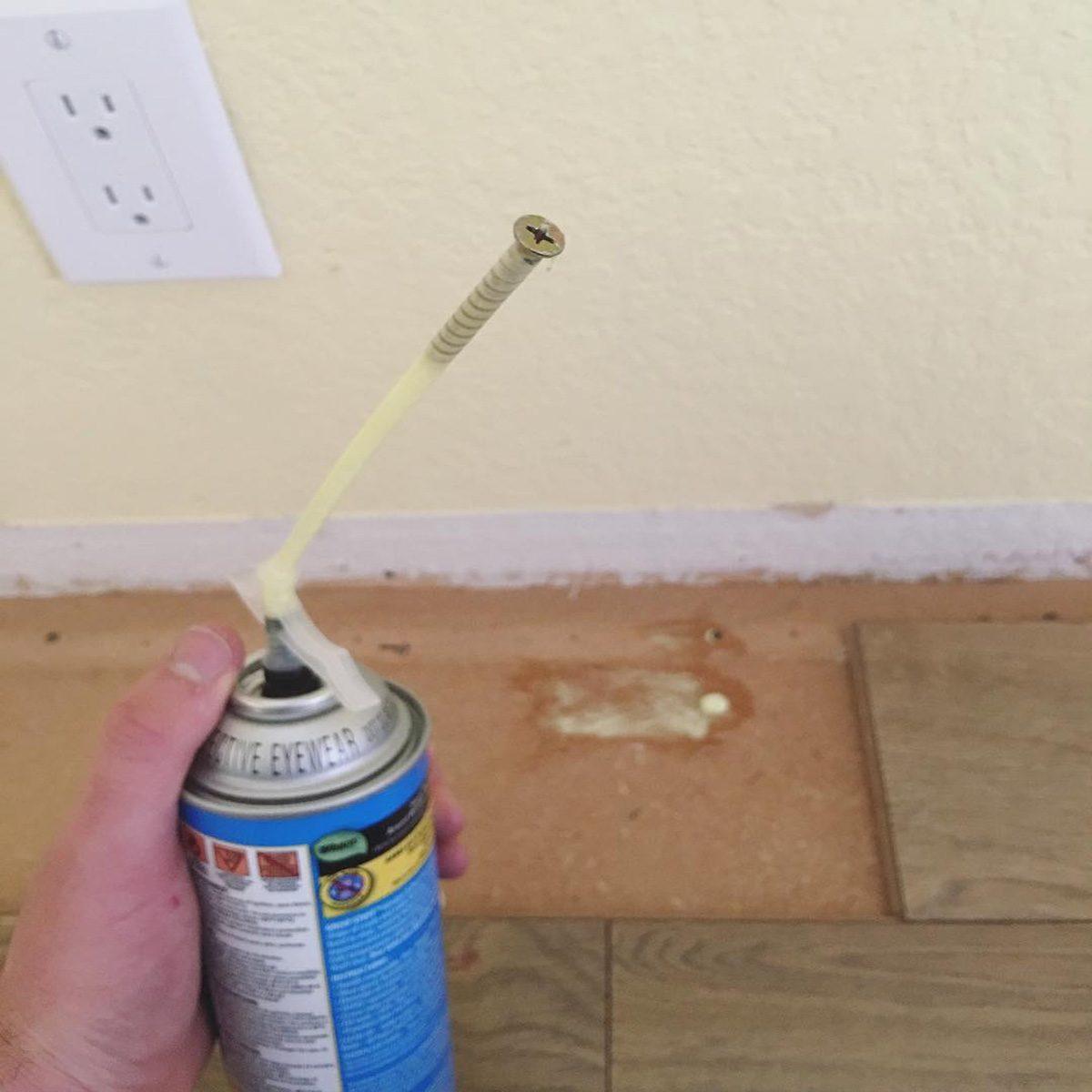 Plug with wood screw