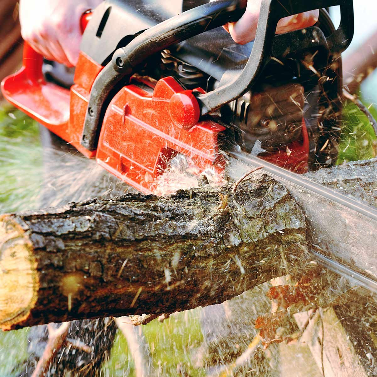 chainsaw cutting log