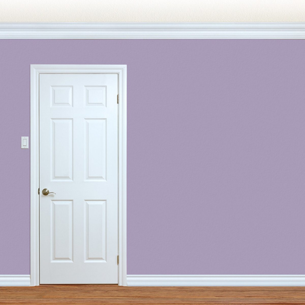 shutterstock_436194085 thin white trim door