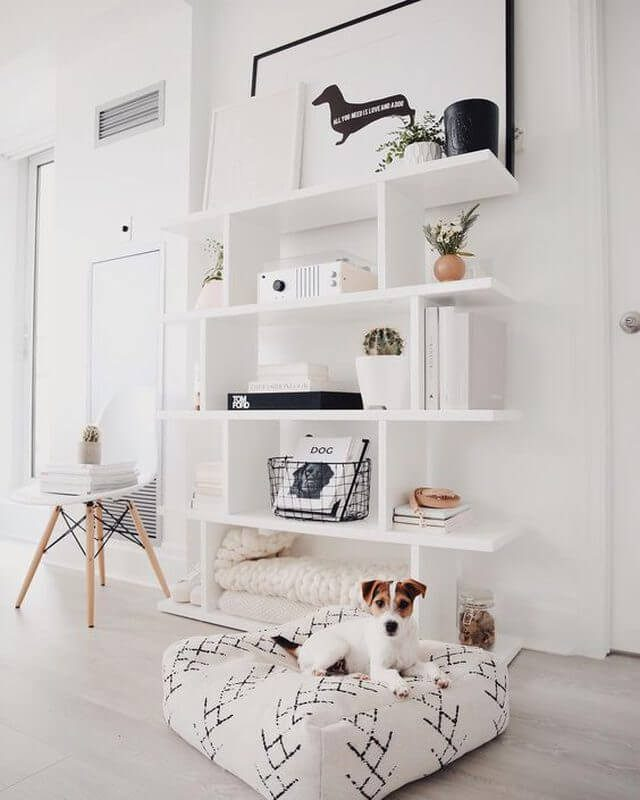 open bookcase with dog