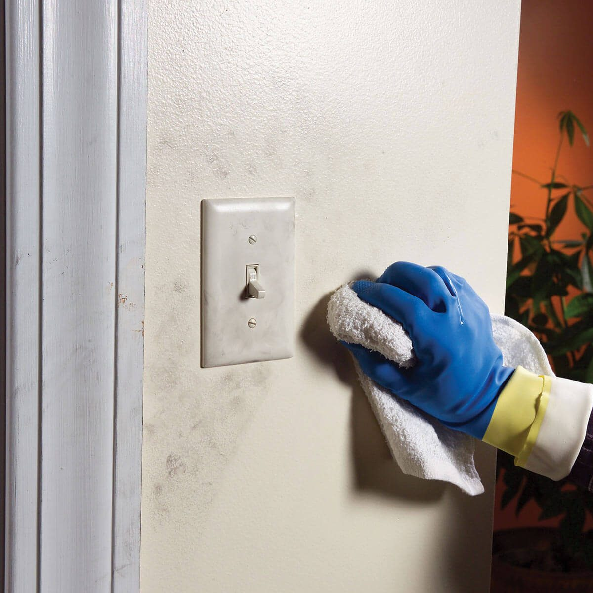 cleaning wall prep