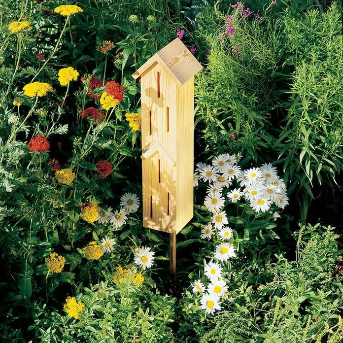 DIY Butterfly house