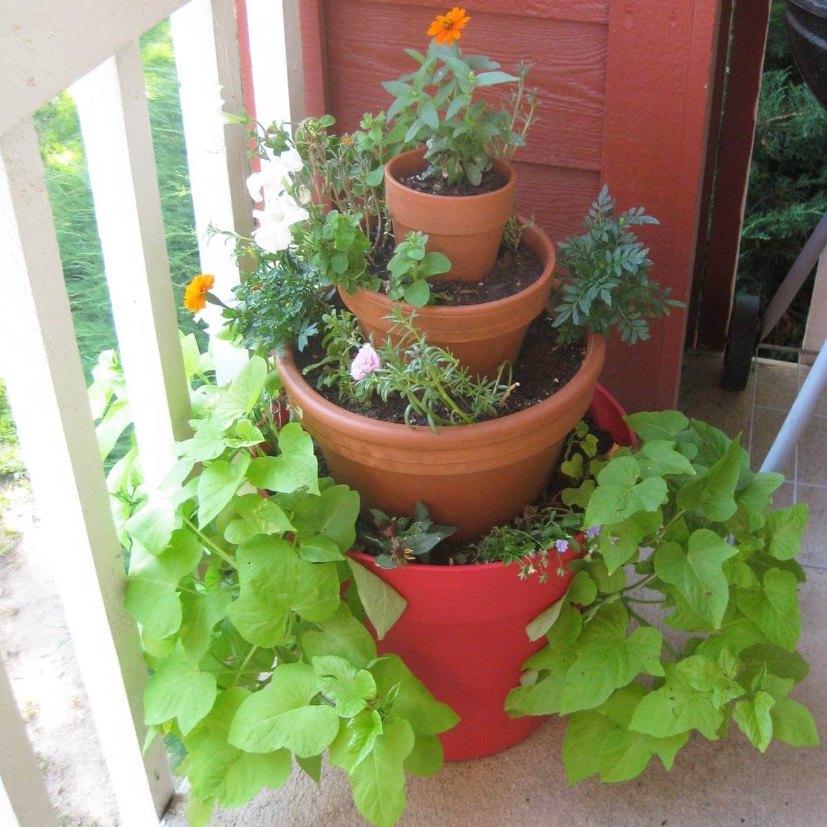 balcony flower tower plants