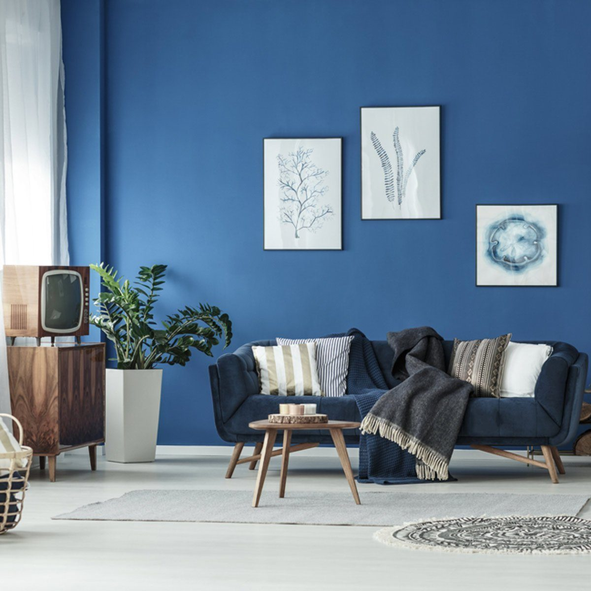 Feng Shui Basics Interior Design Blue Walls Living Room