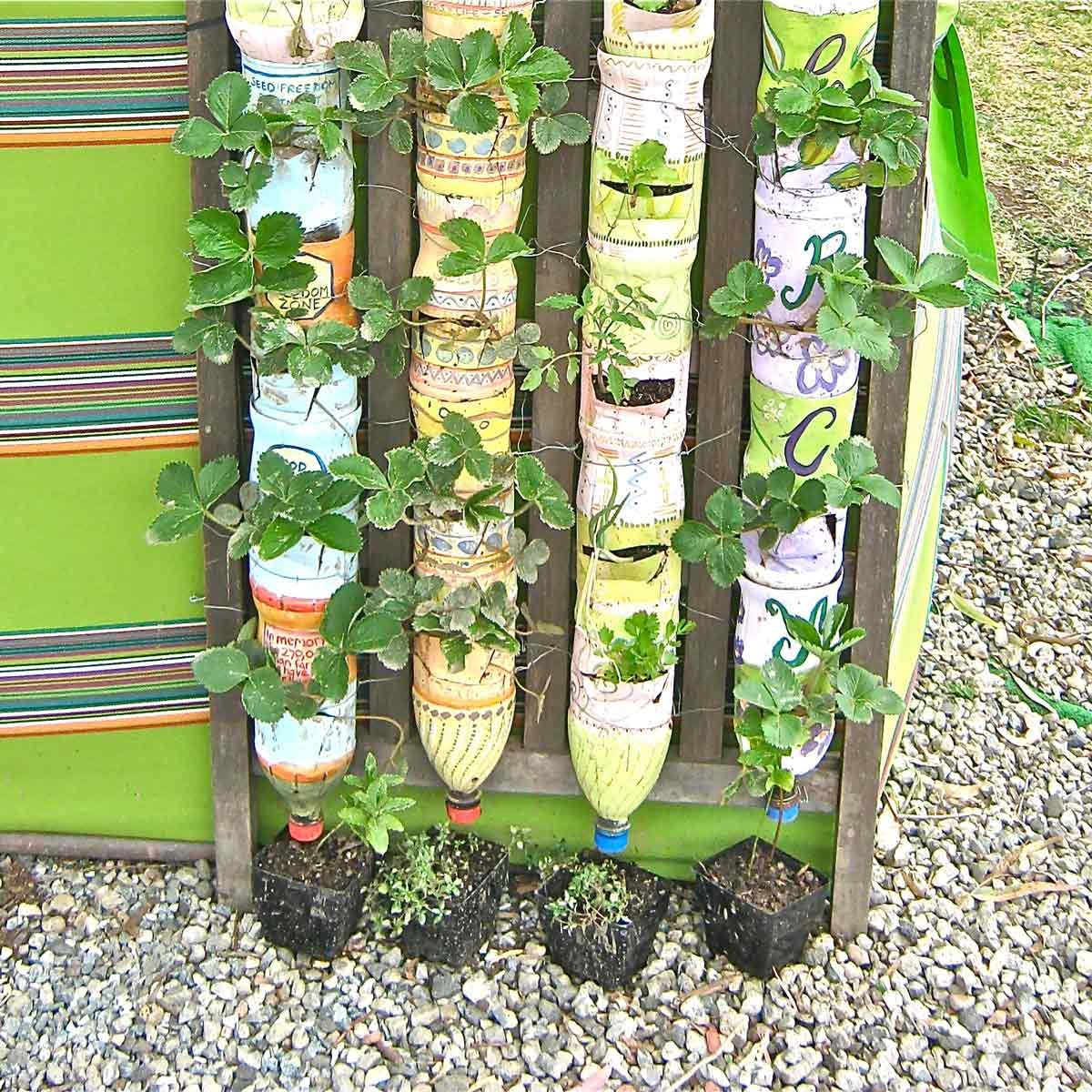 bottle tower garden