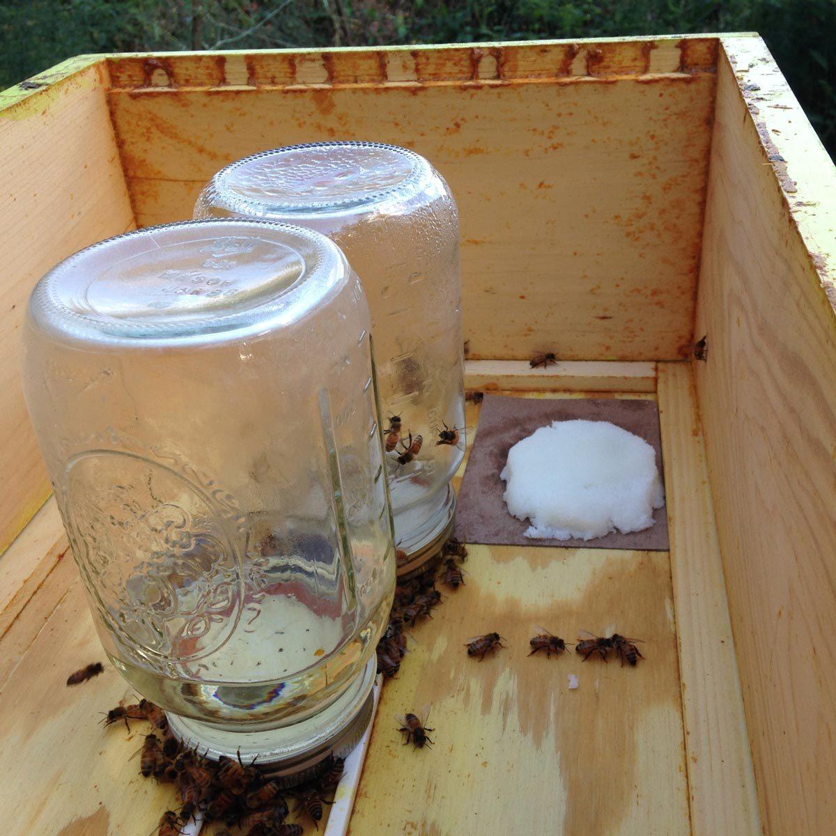 Grease Patties beehive