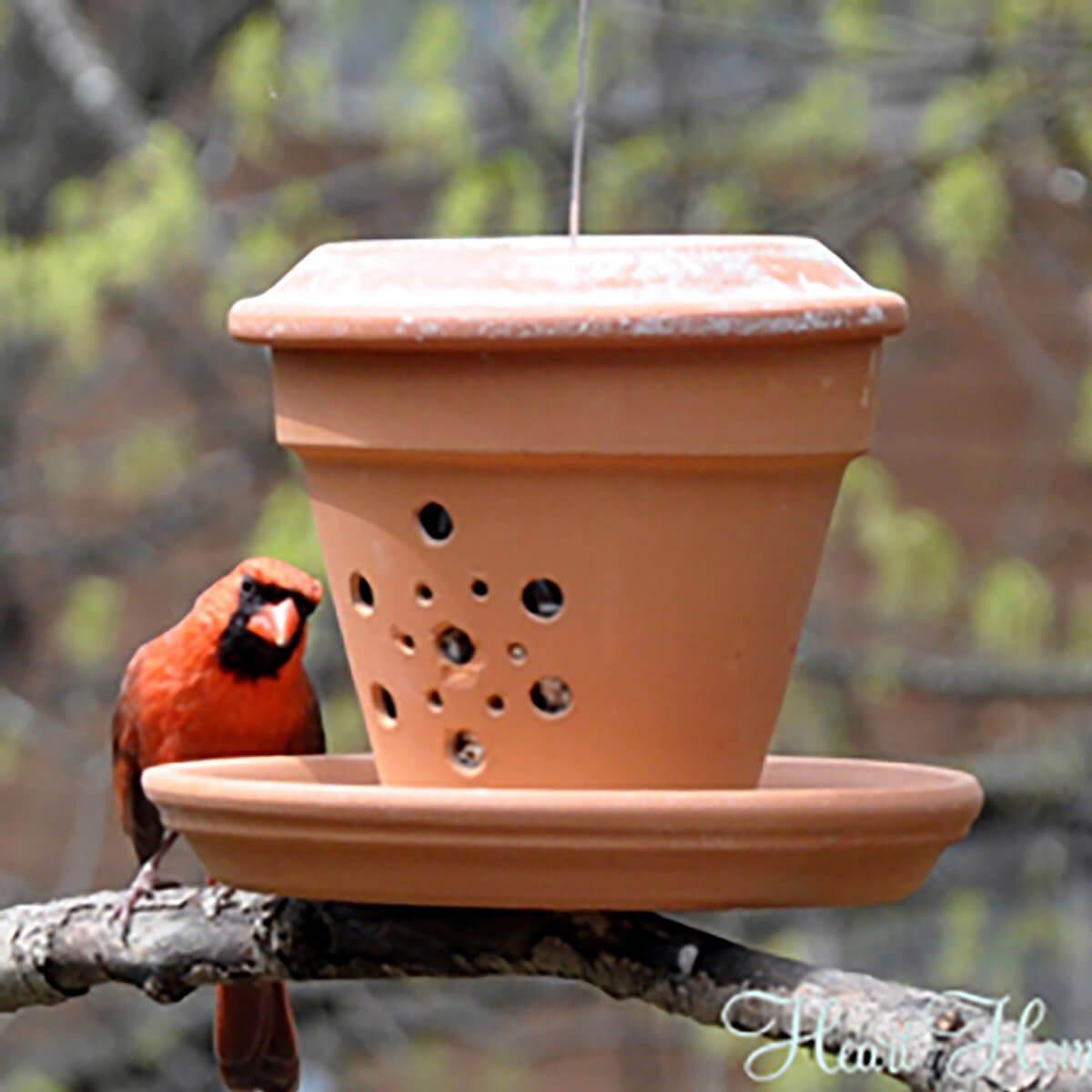 terra cotta pot bird feeder