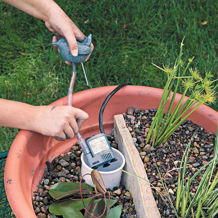 water gardens pea gravel