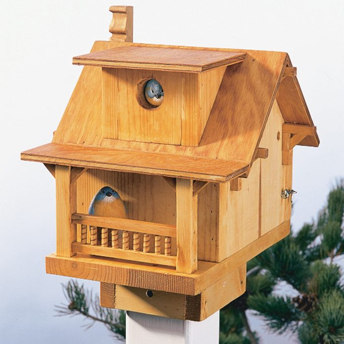 finished oil stained birdhouse