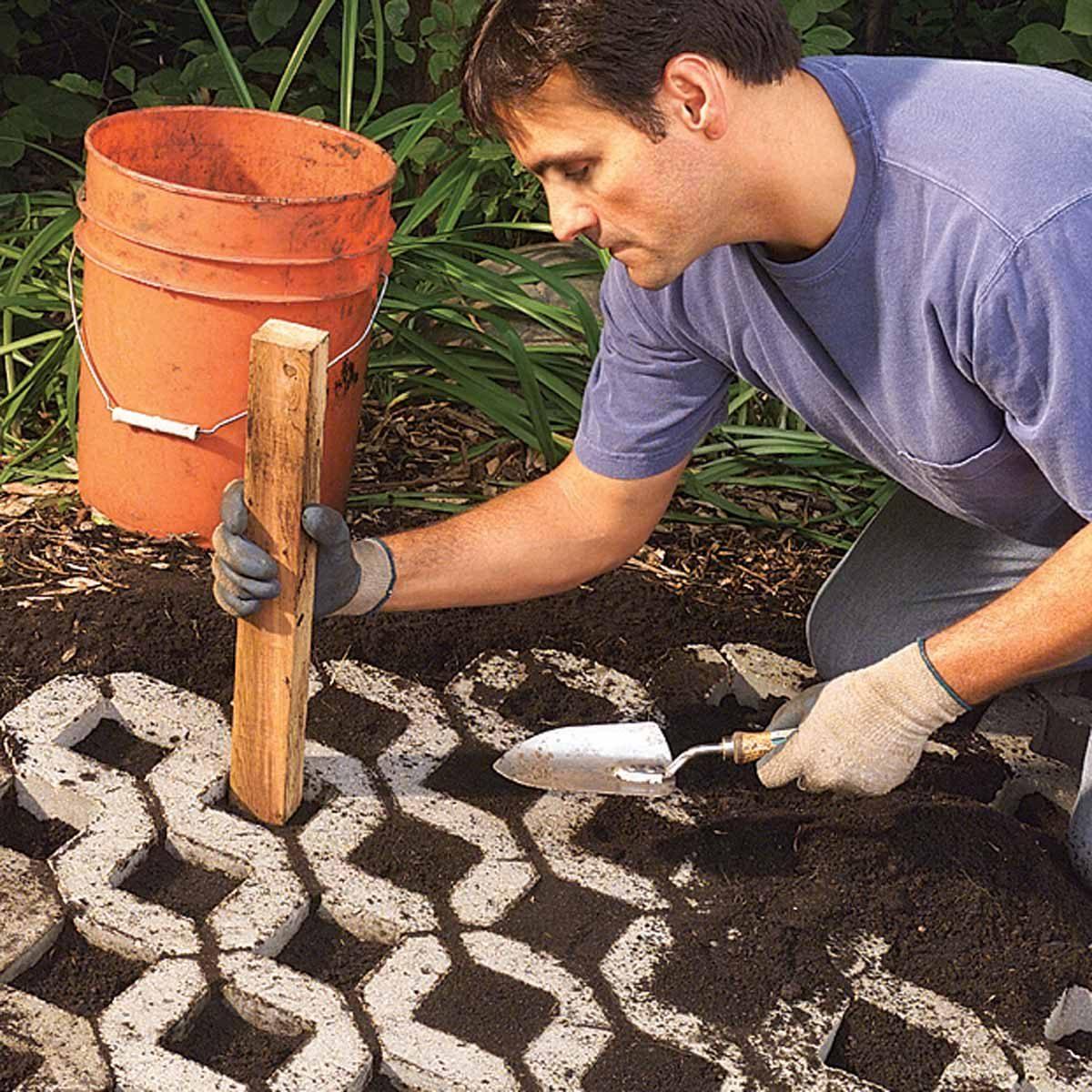 paver path that grows dirt