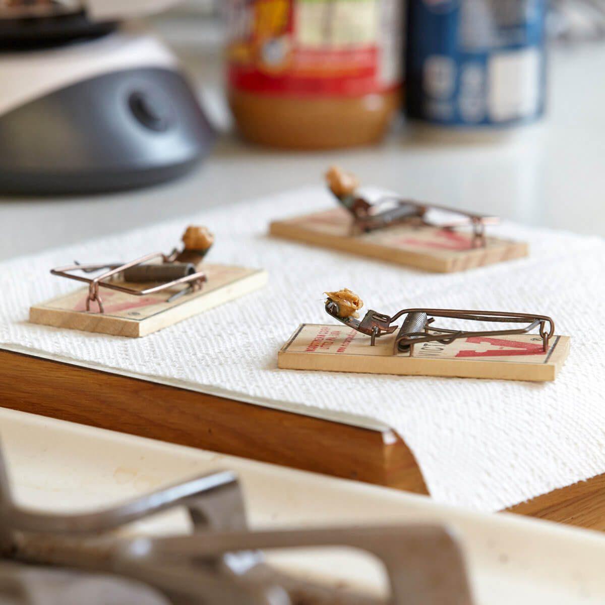 peanut butter mouse trap