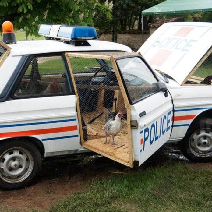 chicken coop in a police car unique chicken coops